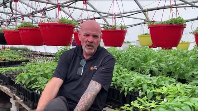 Un homme assis dans une serre devant des rangées de plantes.