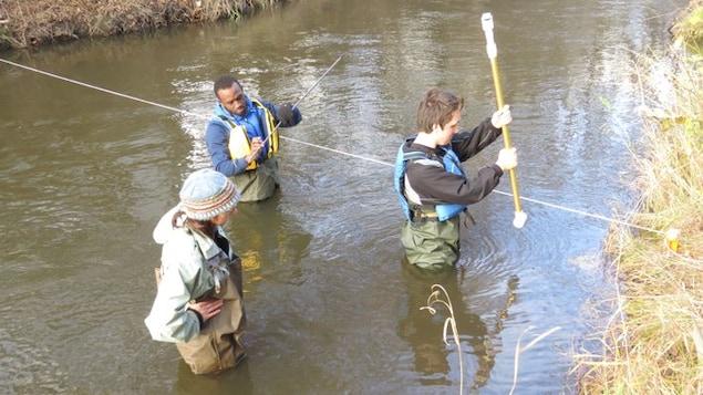 La professeure Anne Watelet et deux de ses étudiants sont dans l'eau du ruisseau Junction à Sudbury jusqu'aux hanches.