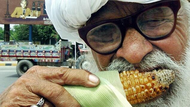 Gros plan sur un aîné pakistanais mangeant un épi de maïs.