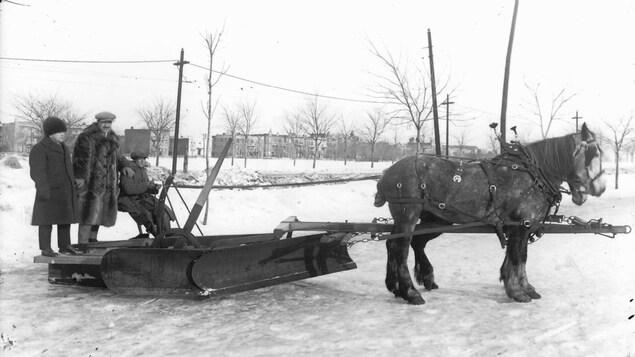 Photo en noir et blanc montrant trois hommes se tenant sur une charrue tirée par un cheval.