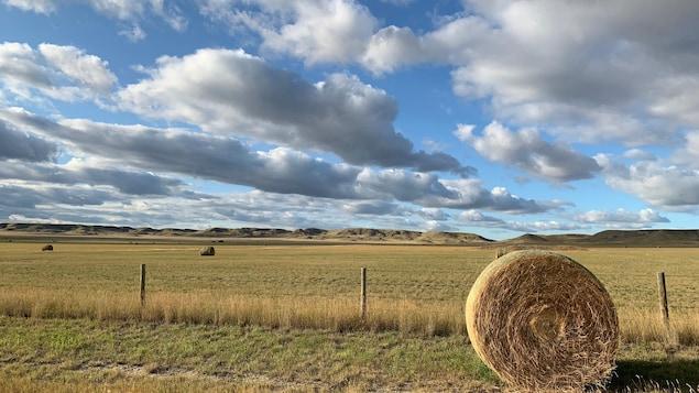 Une balle de foin en avant-plan d'un paysage agricole.