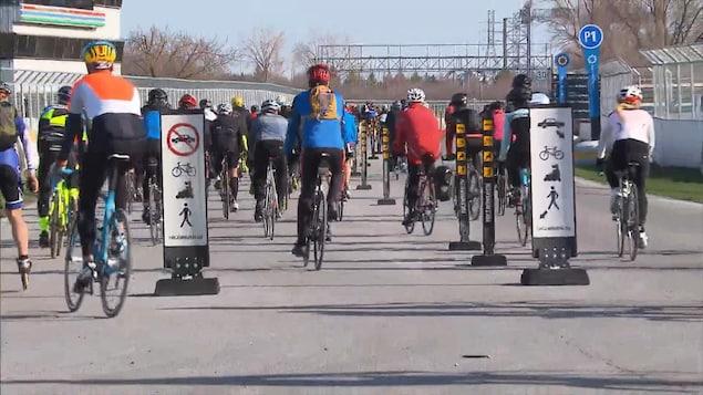 Une foule de cyclistes vus de dos en train de rouler sur une piste cyclable.