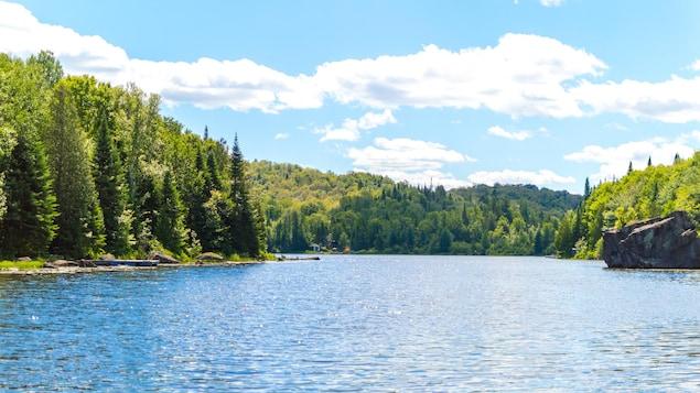 Un forêt entoure un lac sous un ciel bleu.