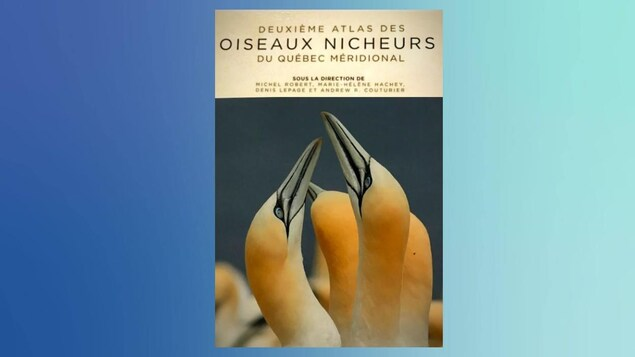 Page couverture « Deuxième atlas des oiseaux nicheurs du Québec méridional »