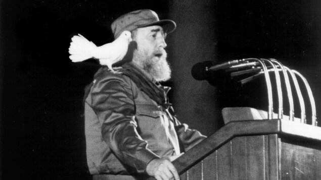 Une colombe blanche se pose sur l'épaule du président cubain Fidel Castro alors qu'il prononce un discours devant la jeunesse cubaine lors d'une cérémonie commémorant le 30e anniversaire de la révolution cubaine à La Havane, le 8 janvier 1989.
