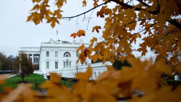 Une vue, un peu cachée par des feuilles au couleur d'automne, de la Maison-Blanche, le 12 novembre 2020, à Washington.