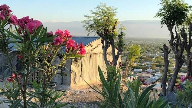 Une vue de l'agglomération urbaine de Canaan en Haïti à travers les arbres et des fleurs.