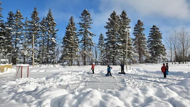 Cinq jeunes sont sur une patinoire extérieure. Ils ont des pelles dans les mains et déneigent la surface.