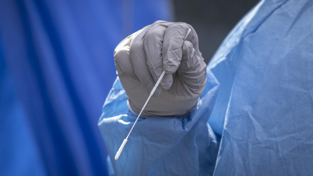 Une main portant un gant tient un écouvillon.