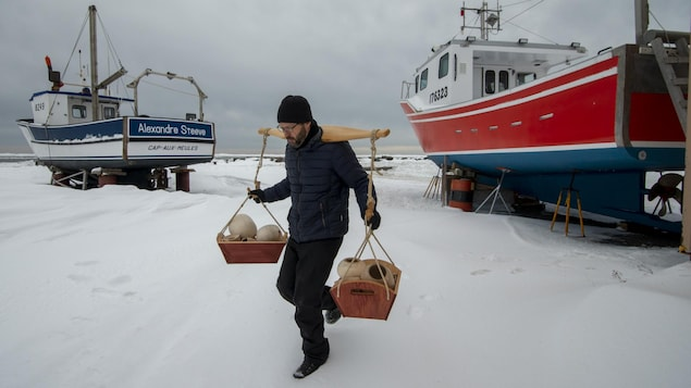 Un homme porte un joug et du bois à travers des bateaux sortis de l'eau pour l'hiver aux Îles-de-la-Madeleine.