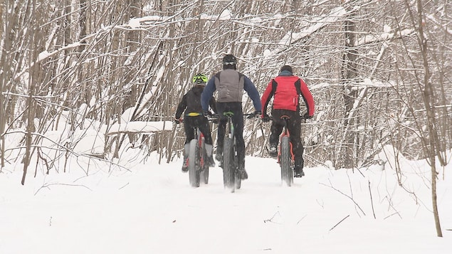 Des adeptes de fatbike dans un sentier en hiver