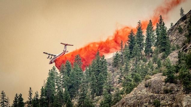 Un avion qui largue du retardateur de feu sur une falaise avec des arbres.