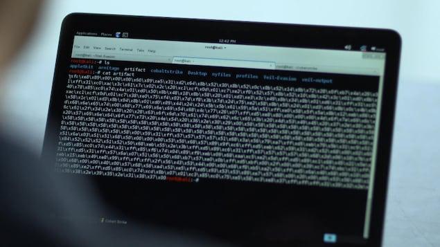 Une personne travaille à l'ordinateur.