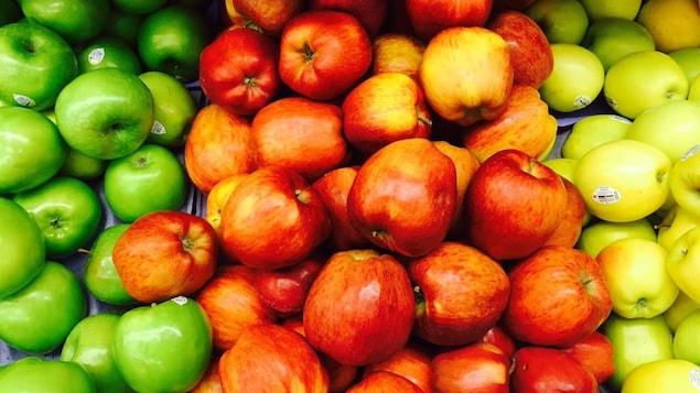 Des pommes de toutes les couleurs