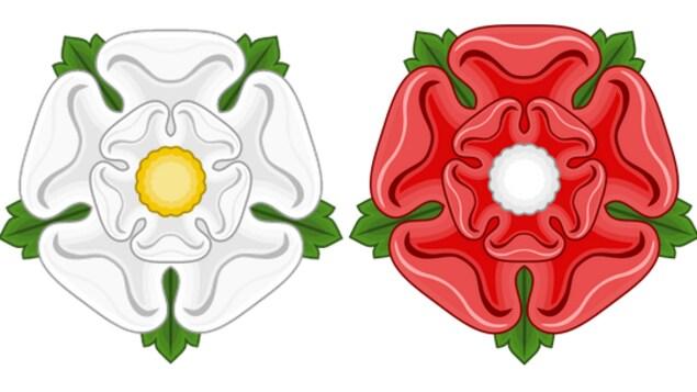La rose blanche des York et la rose rouge des Lancaster