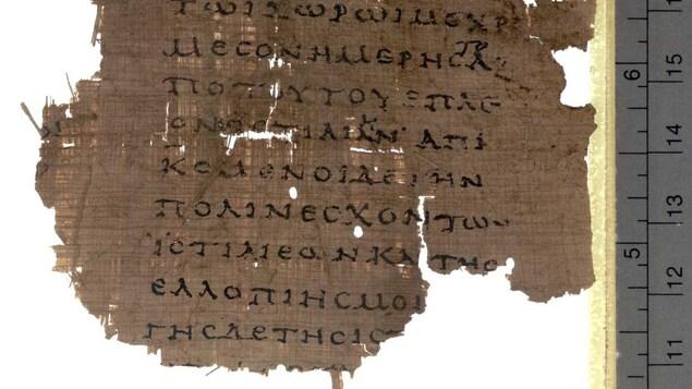 Un vieux morceau de papyrus en lambeaux à côté d'une règle qui nous en donne la dimension.