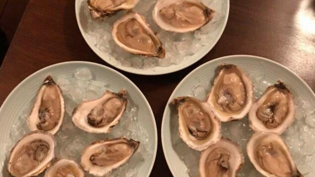 Des huîtres ouvertes, dans des assiettes, sur glace.