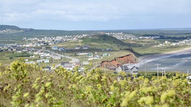 Un paysage madelinot de collines, des maisons et de la mer à Havre- Aubert et des fleurs en avant-plan.