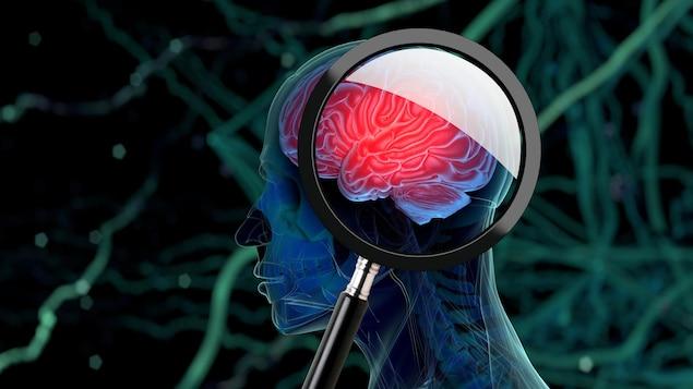Illustration 3D d'un cerveau humain vue à travers une loupe.