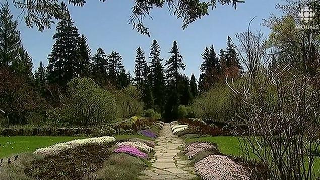 Vue d'une allée où se côtoient fleurs et conifères aux Jardins de Métis