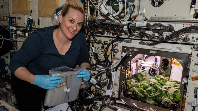 Une astronaute tient un sac de plastique dans ses mains, tout en posant pour la caméra, juste à côté d'un compartiment de haute technologie qui contient des pousses de vétégaux.