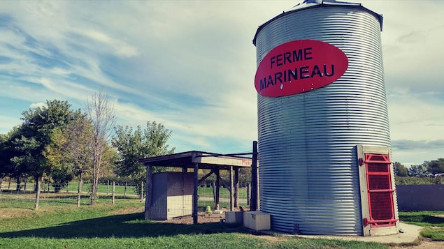 La ferme Marineau.