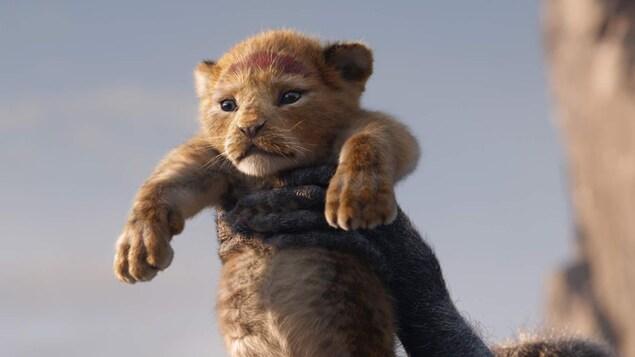 Baptême du petit Simba dans le film Le Roi lion.
