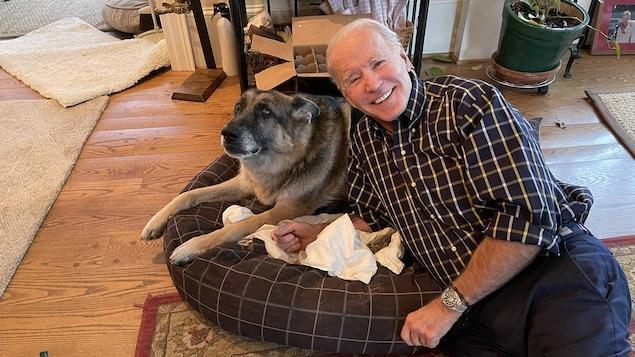Joe Biden étendu sur le sol à côté d'un berger allemand couché sur un coussin.