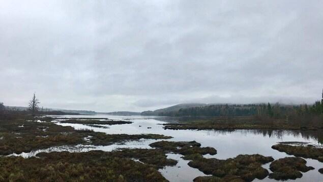 Photo des Marais du Nord par temps gris