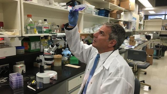 Gary Kobinger, tiens des échantillons dans un laboratoire.