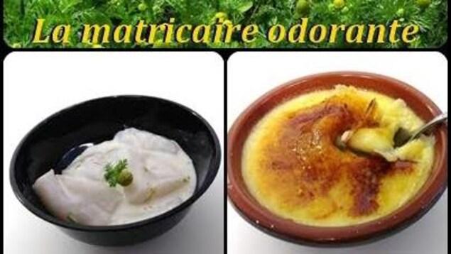 Des recettes à base de Matricaire odorante élaborées par Manon Houle de la pâtisserie La Vitrine de Sherbrooke.