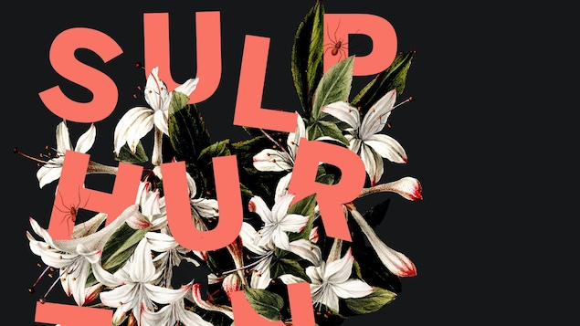 La page couverture du recueil « Sulphurtongue » ; des fleurs poussent parmi les lettres qui épellent le titre de l'œuvre