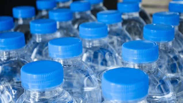 Des bouteilles d'eau en plastique sont disposées les unes à côté des autres.
