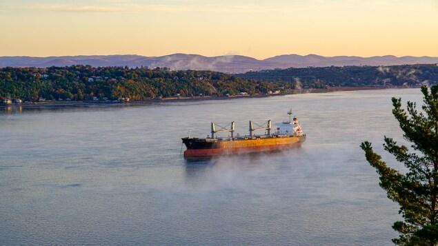 Un bateau navigue sur le fleuve Saint-Laurent.