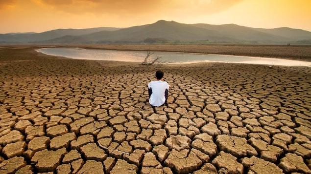 Une personne constate les conséquences de la sècheresse sur une parcelle de terre.