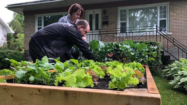 Un couple travaille à l'aménagement d'un potager en façade de leur maison