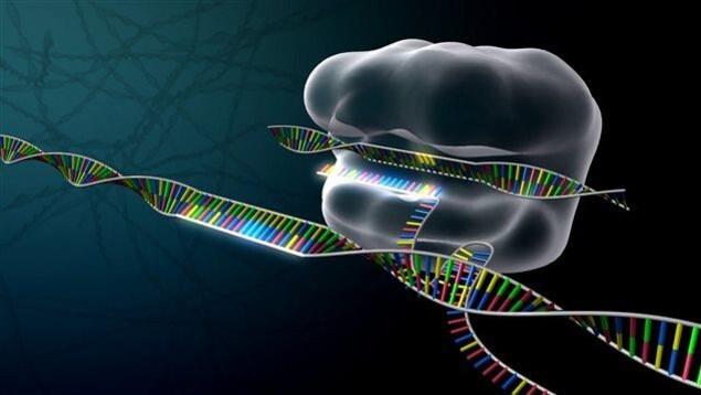 Image de synthèse représentant les ciseaux moléculaires CRISPR en action.