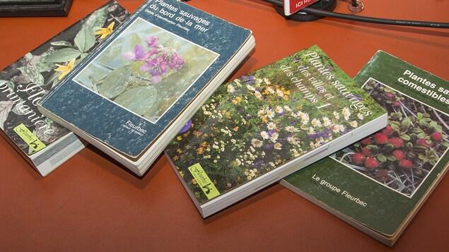 Couvertures de quatre guides publiés par Gisèle Lamoureux et le groupe Fleurbec.