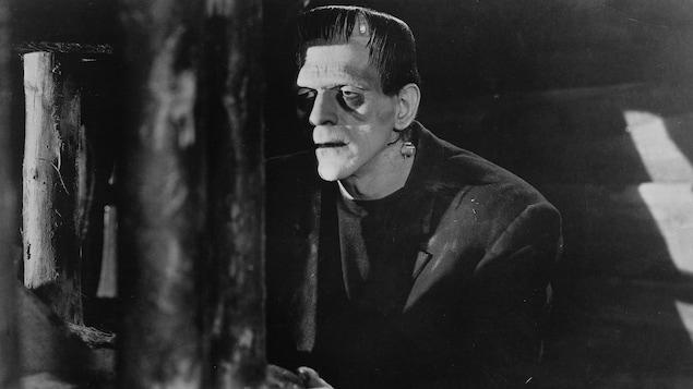 Boris Karloff en 1931 dans l'une des adaptations cinématographies les plus connues du roman Frankenstein ou le Prométhée moderne, de Mary Shelley.