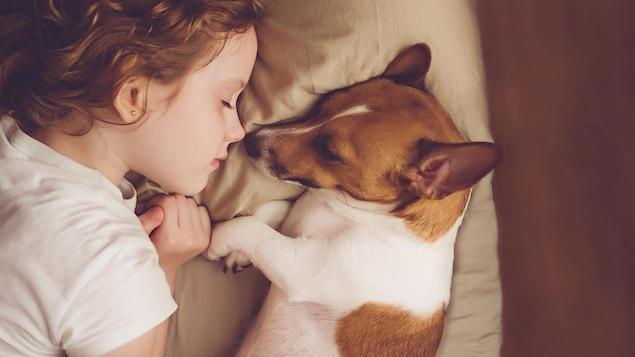 Une enfant dort avec un chien dans un lit.