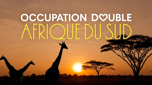 Occupation double: Afrique du Sud