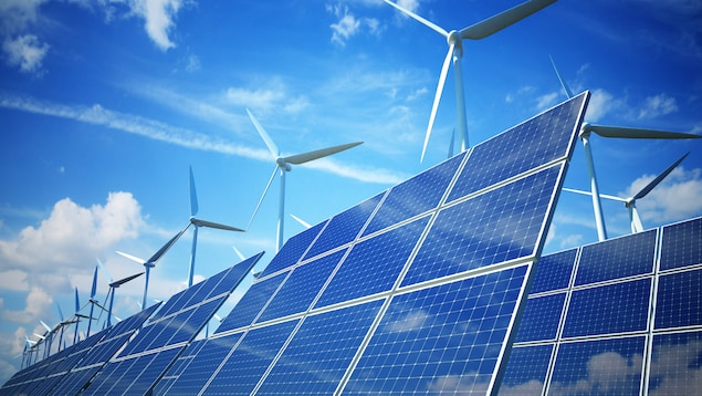 Panneaux solaires et éoliennes sous un ciel bleu.