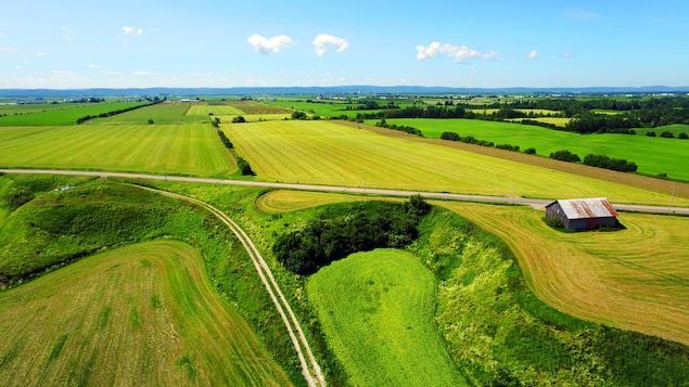 Une vue aérienne montre des champs cultivés dans la campagne québécoise.