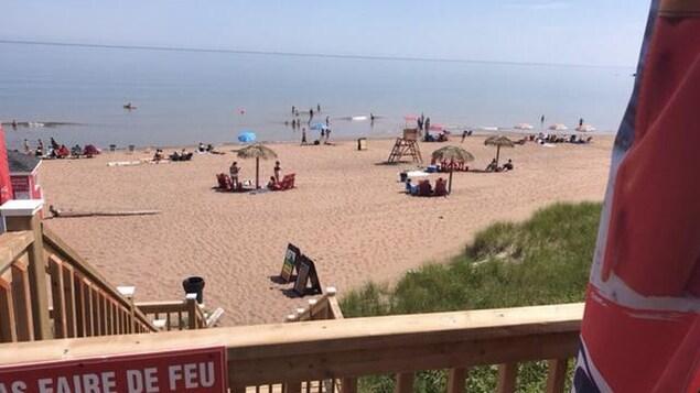 Une plage avec des parasols.