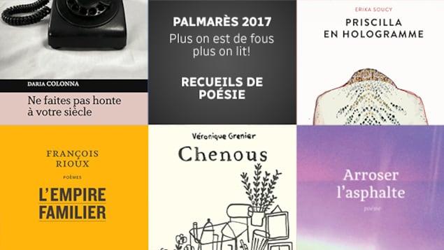 Quelques-uns des meilleurs recueils de poésie parus en 2017 selon l'équipe de <em>Plus on est de fous, plus on lit!</em>
