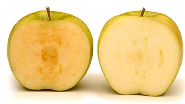 La pomme Arctique, modifiée génétiquement, à droite, ne brunit pas comme la pomme conventionelle de gauche.