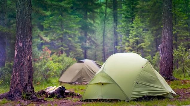 Deux tentes au milieu d'une forêt.