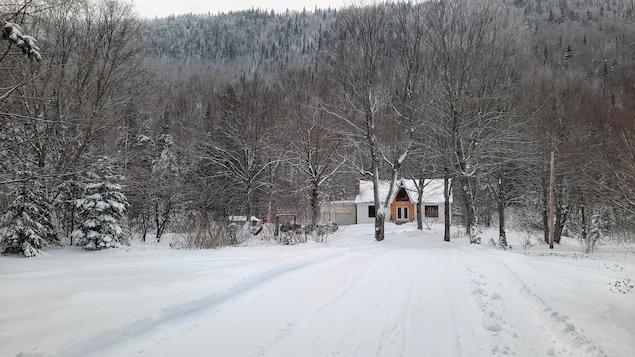Un maison à travers les arbres, au bout d'un chemin enneigé.