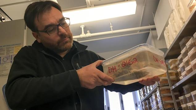 Le chercheur en neurosciences Naguib Mechawar tient un plat de plastique avec un cerveau humain à l'intérieur.