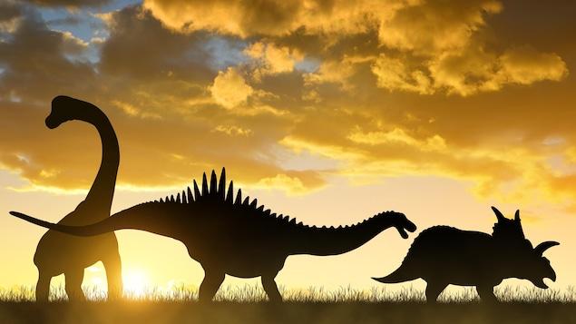 Des silhouettes de dinosaures.